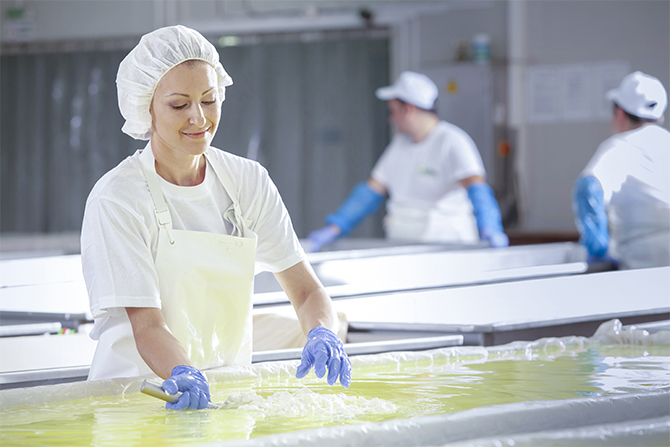 Dairy worker in PPE
